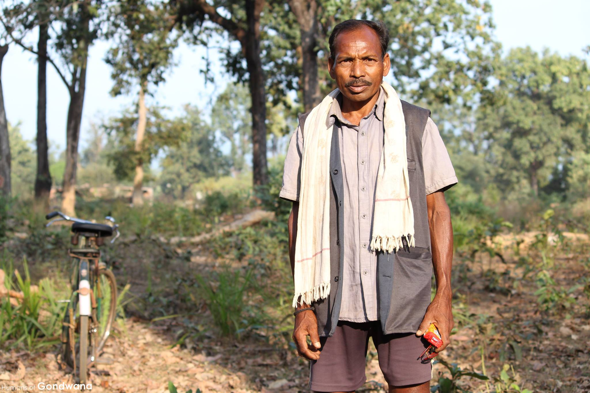 essay on adivasis Studies is that tribes and adivasis are almost always invisible in modern state archives, where they surface only as objects of counter 1 in this essay.