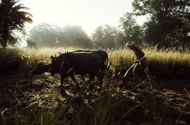 गाँव और ग्रामीणों के पलायन की अर्थशास्त्रीय विवेचना